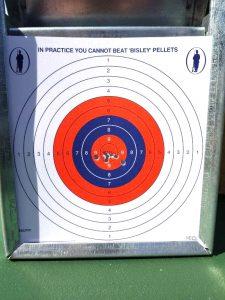 Bisley Target